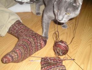 Tobias the Cat